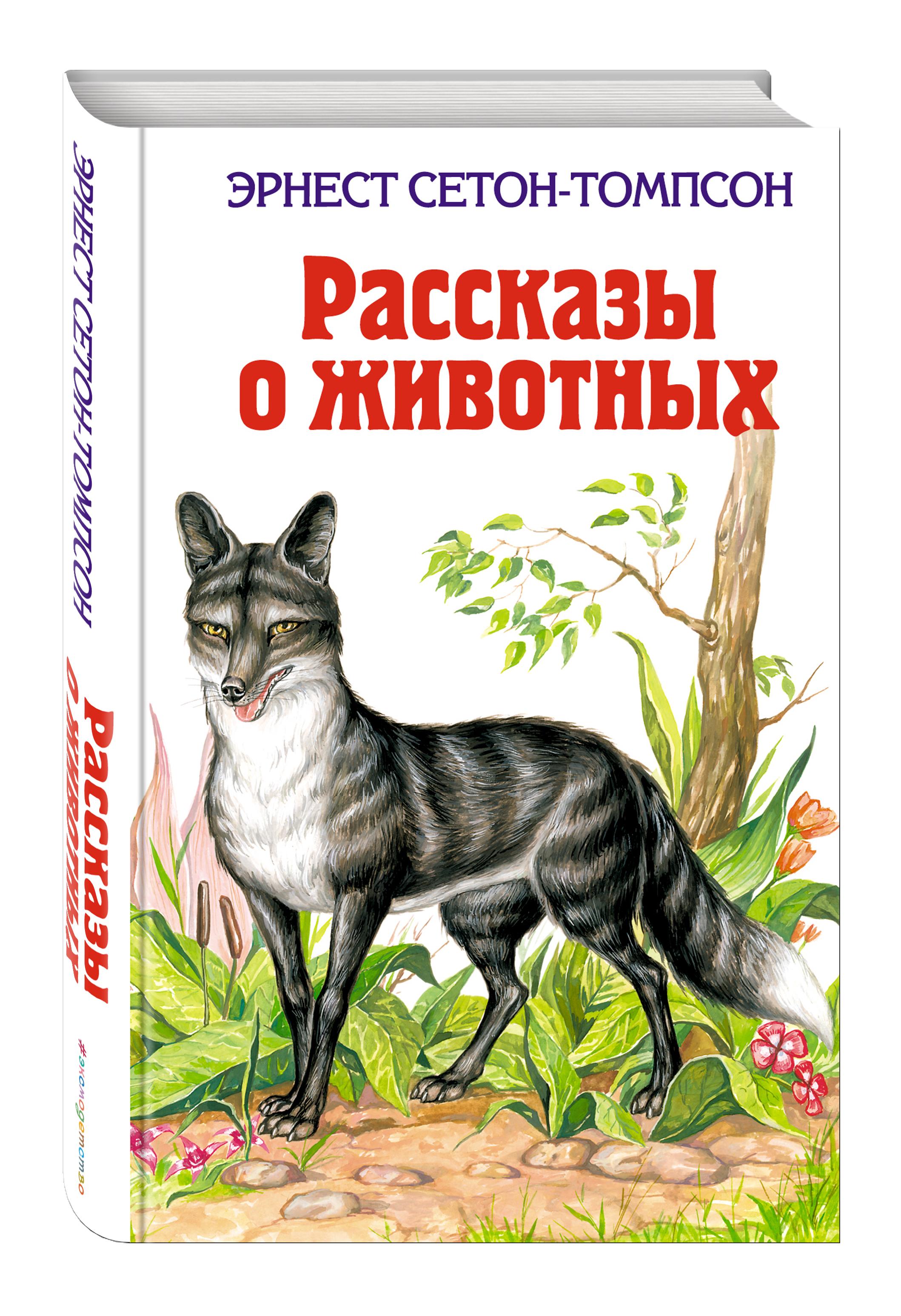 Картинки и рассказы о животных