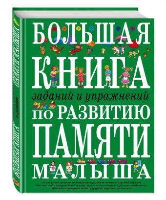 Большая книга заданий и упражнений по развитию памяти малыша И.Е. Светлова