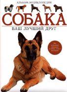Стиллвелл Х. - Собака. Ваш лучший друг. Альбом-энциклопедия' обложка книги
