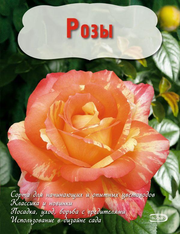 Розы (Вырубка. Цветы в саду и на окне) Писарев Е.А.