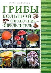 Грибы: большой справочник-определитель