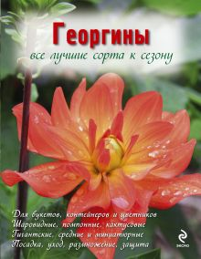 Георгины (Вырубка. Цветы в саду и на окне)