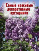 Чуб В.В. - Самые красивые декоративные кустарники в вашем саду' обложка книги