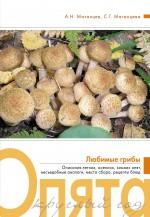 Матанцев А.Н., Матанцева С.Г. - Опята круглый год обложка книги