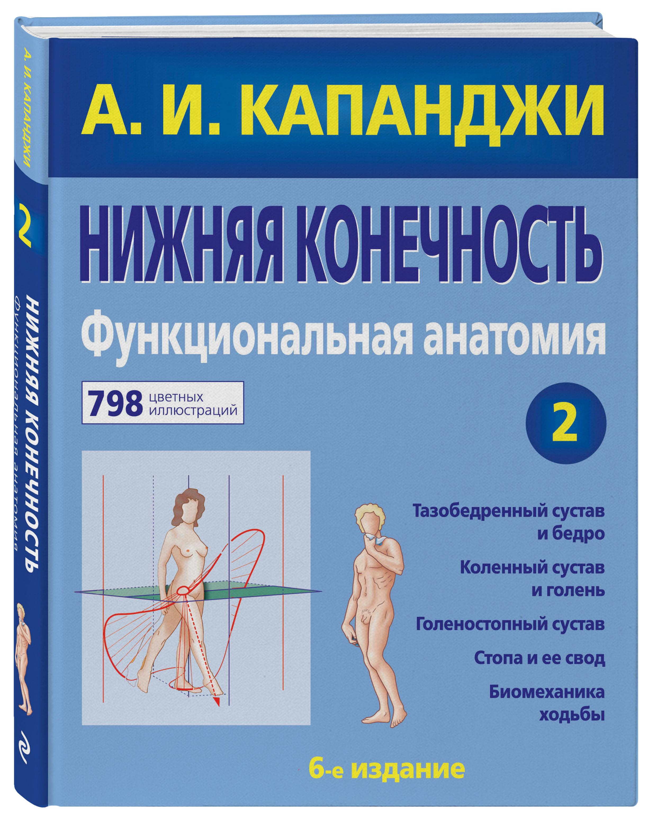 Капанджи А.И. Нижняя конечность: Функциональная анатомия книги эксмо нижняя конечность функциональная анатомия