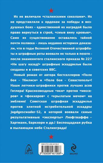 Штрафная эскадрилья. В пылающем небе Сталинграда Савицкий Г.