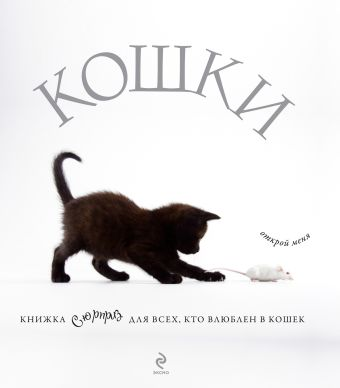 Кошки. Подарок для всех, кто влюблен в кошек