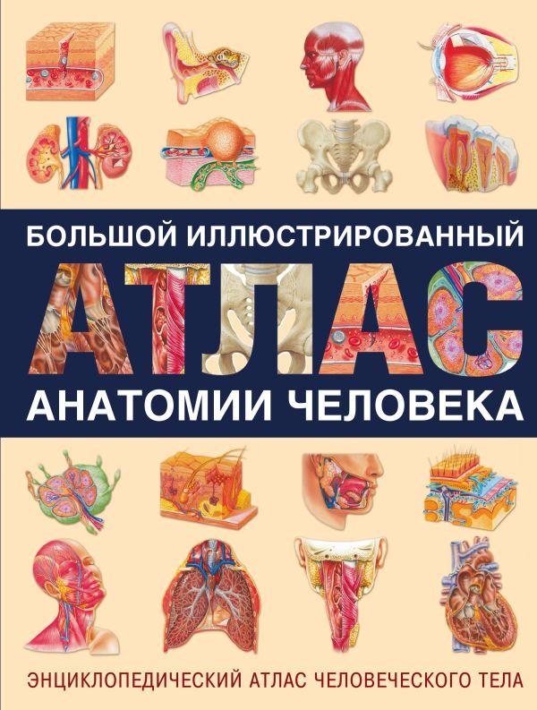 Большой иллюстрированный атлас анатомии человека Карпенко Т.