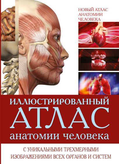 Иллюстрированный атлас анатомии человека - фото 1