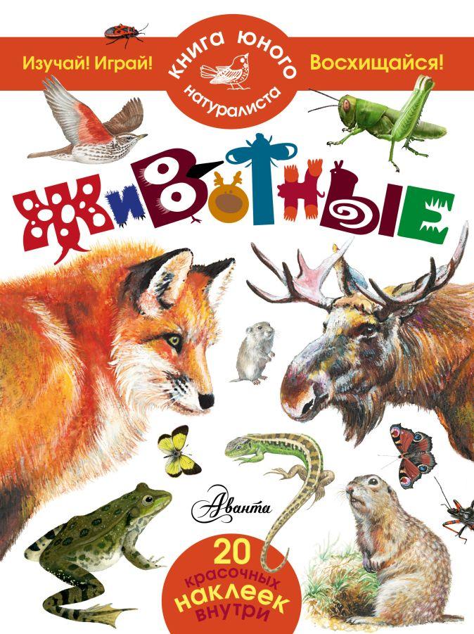 Волцит П.М. - Животные обложка книги
