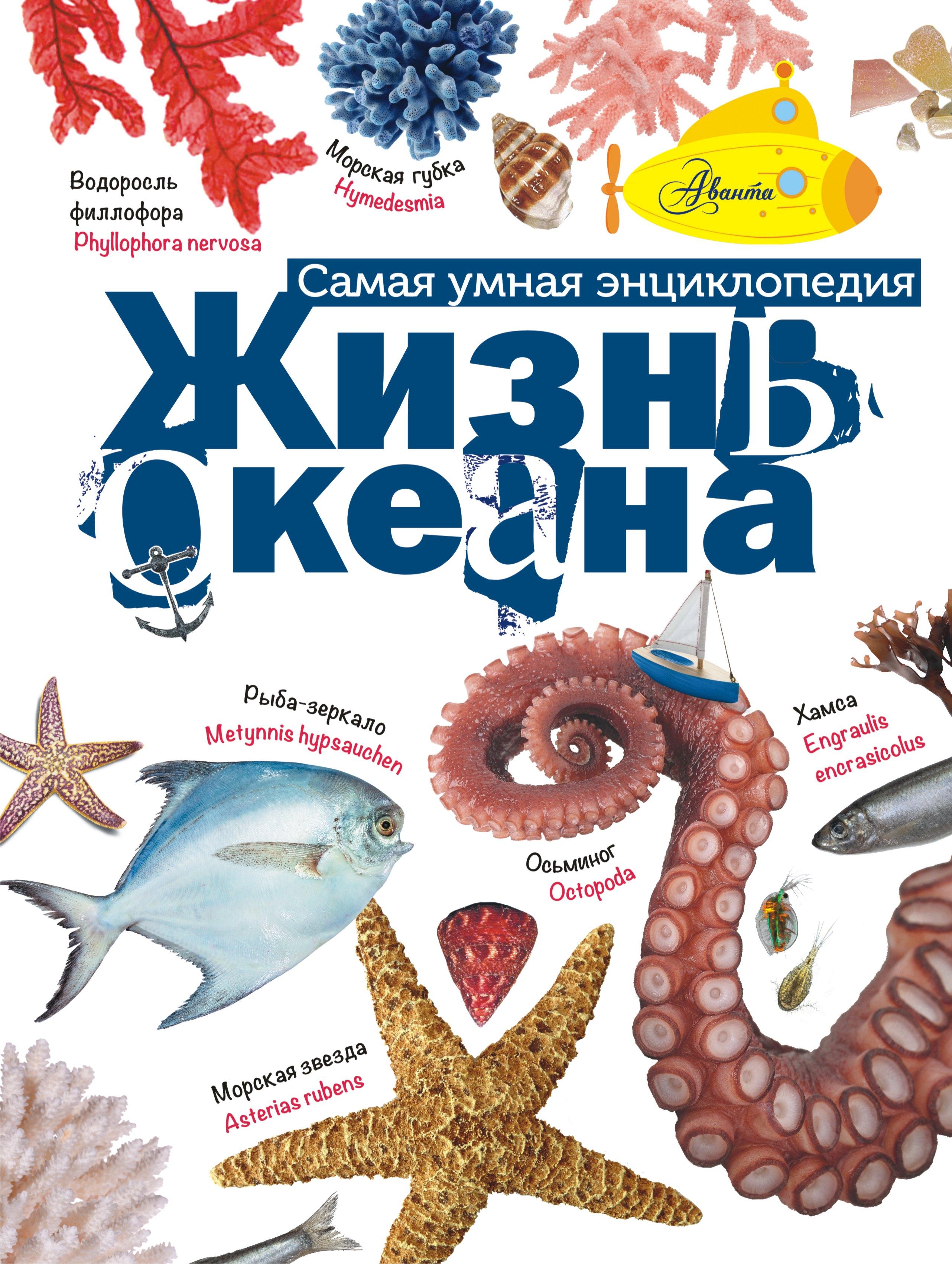 Тихонов А.В. Жизнь океана тихонов а в жизнь океана
