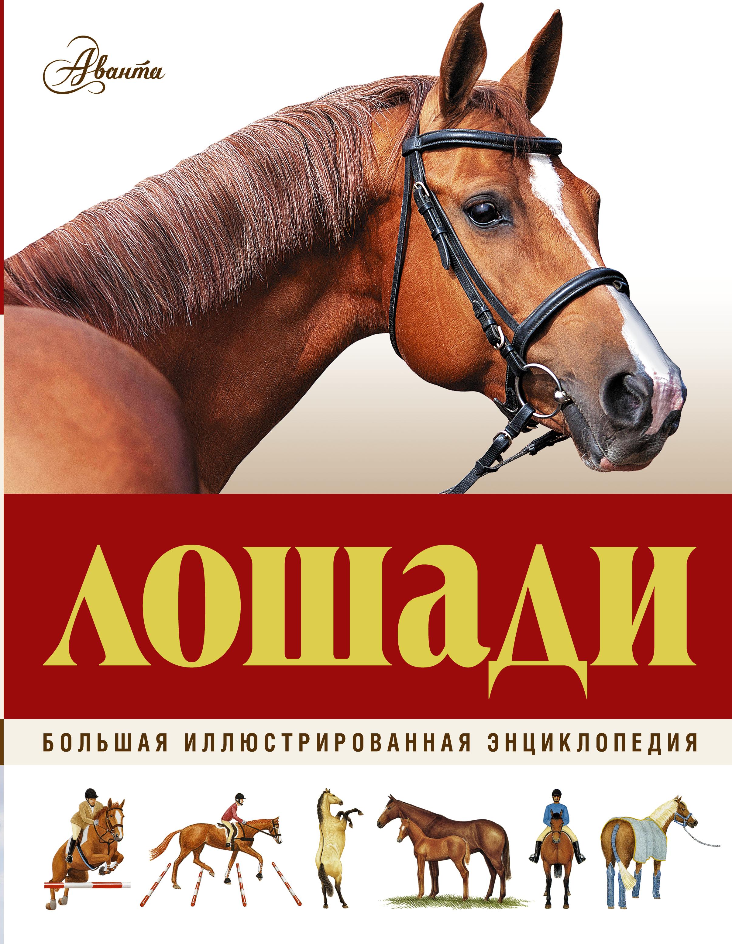 . Большая иллюстрированная энциклопедия. Лошади травина и в лошади самая первая энциклопедия