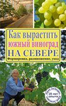 Загвоздин Ю.М. - Как вырастить южный виноград на севере' обложка книги