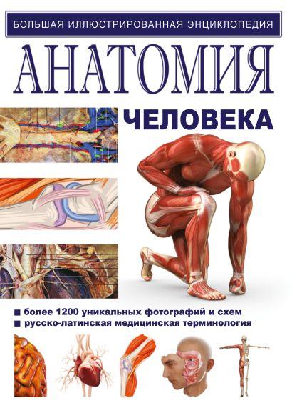 Анатомия человека - фото 1