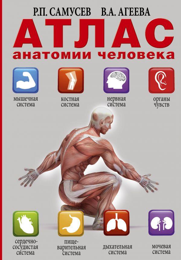 Самусев Рудольф Павлович: Атлас анатомии человека