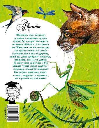 Такие разные животные В. Танасийчук, И. Акимушкин