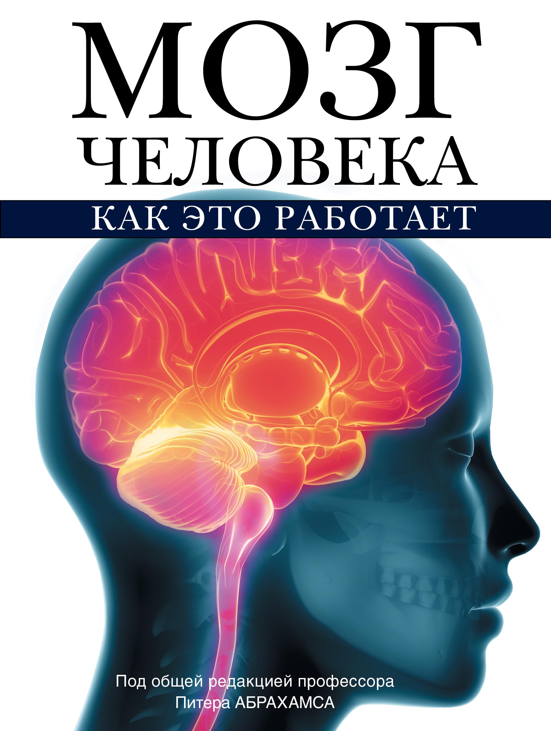 Абрахамс П. Мозг человека. Как это работает питер абрахамс мозг человека как это работает