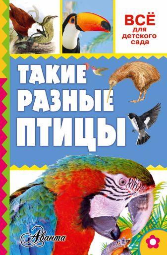 Тихонов А.В. - Такие разные птицы обложка книги