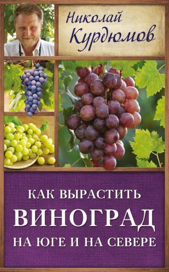 Курдюмов Н.И. - Как вырастить виноград на Юге и на Севере обложка книги