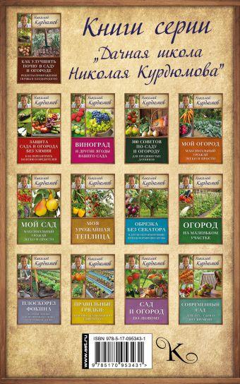 Как вырастить виноград на Юге и на Севере Курдюмов Н.И.