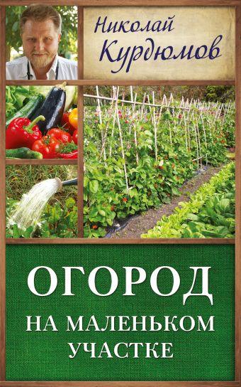 Огород на маленьком участке Курдюмов Н.И.