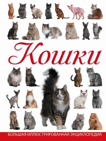 Кошки Смирнов Д.С.