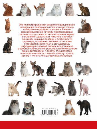 Кошки Д. Смирнов