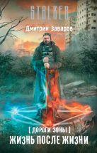 Заваров Д.В. - Дороги Зоны. Жизнь после жизни' обложка книги