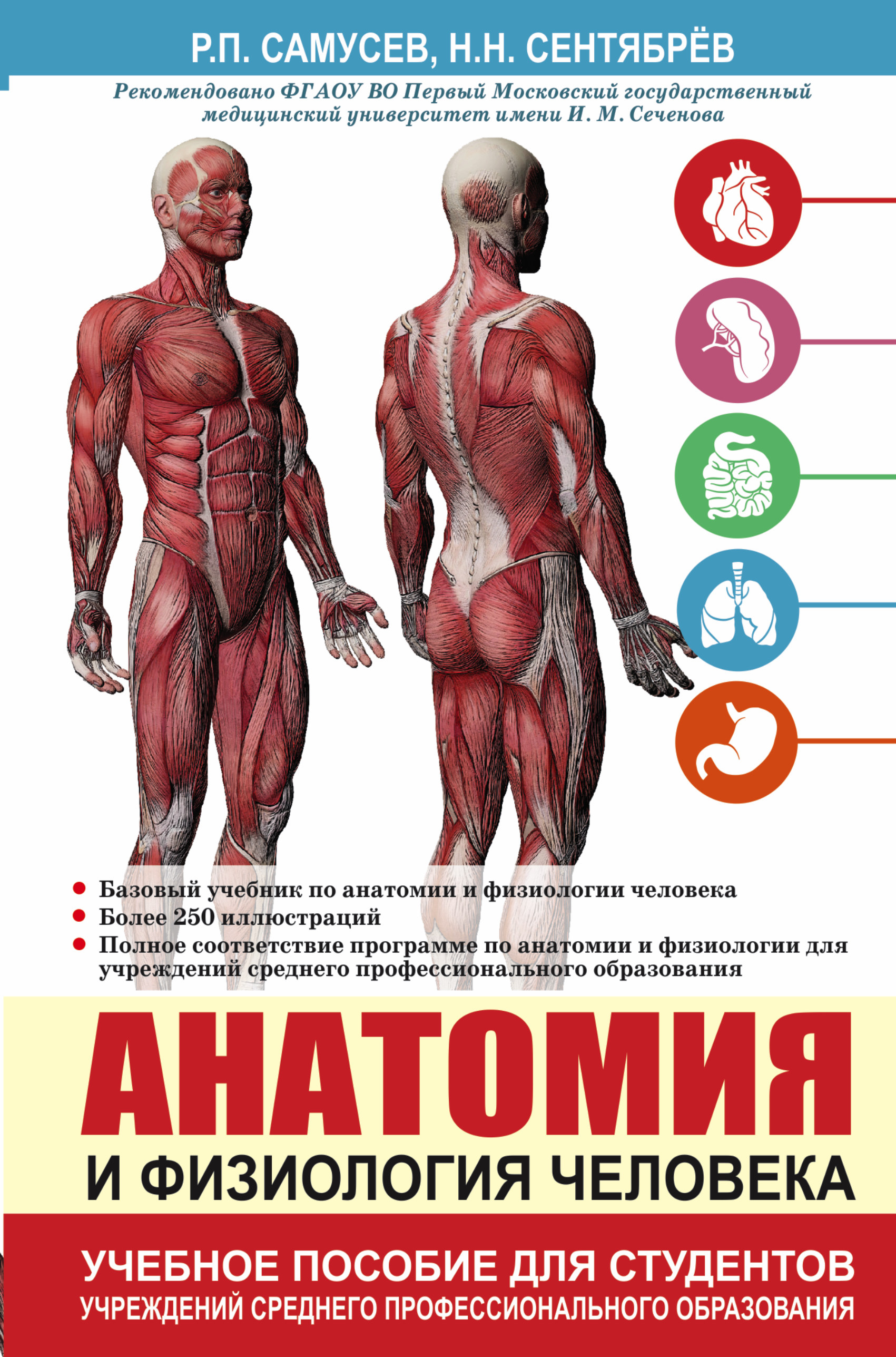 anatomy phisiology Anatomy: anatomy, a field in the biological sciences concerned with the identification and description of the body structures of living things.