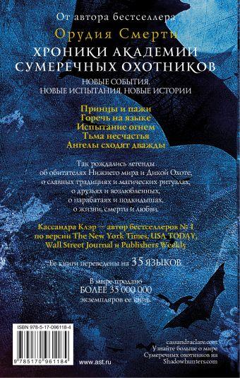 Хроники Академии Сумеречных охотников 2 Кассандра Клэр