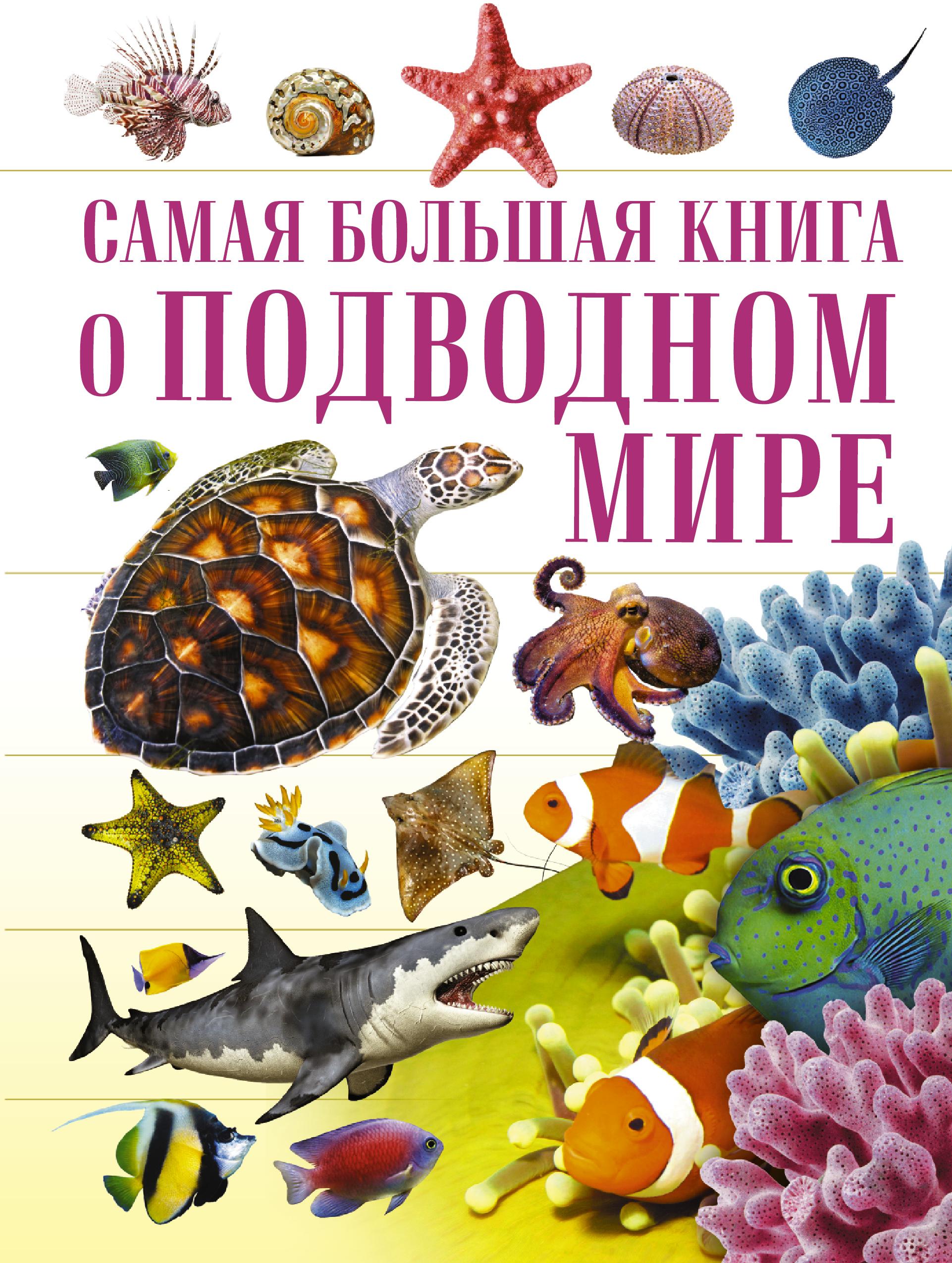 . О подводном мире о подводном мире