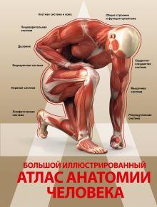 Большой иллюстрированный атлас анатомии человека