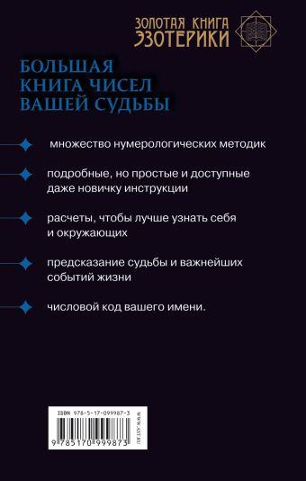 Нумерология. Большая книга чисел вашей судьбы Сергей Матвеев