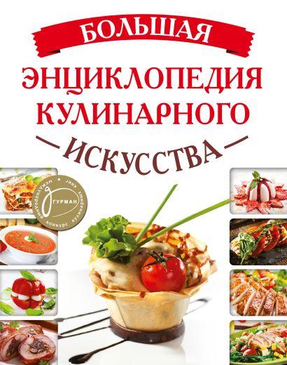 Большая энциклопедия кулинарного искусства - фото 1