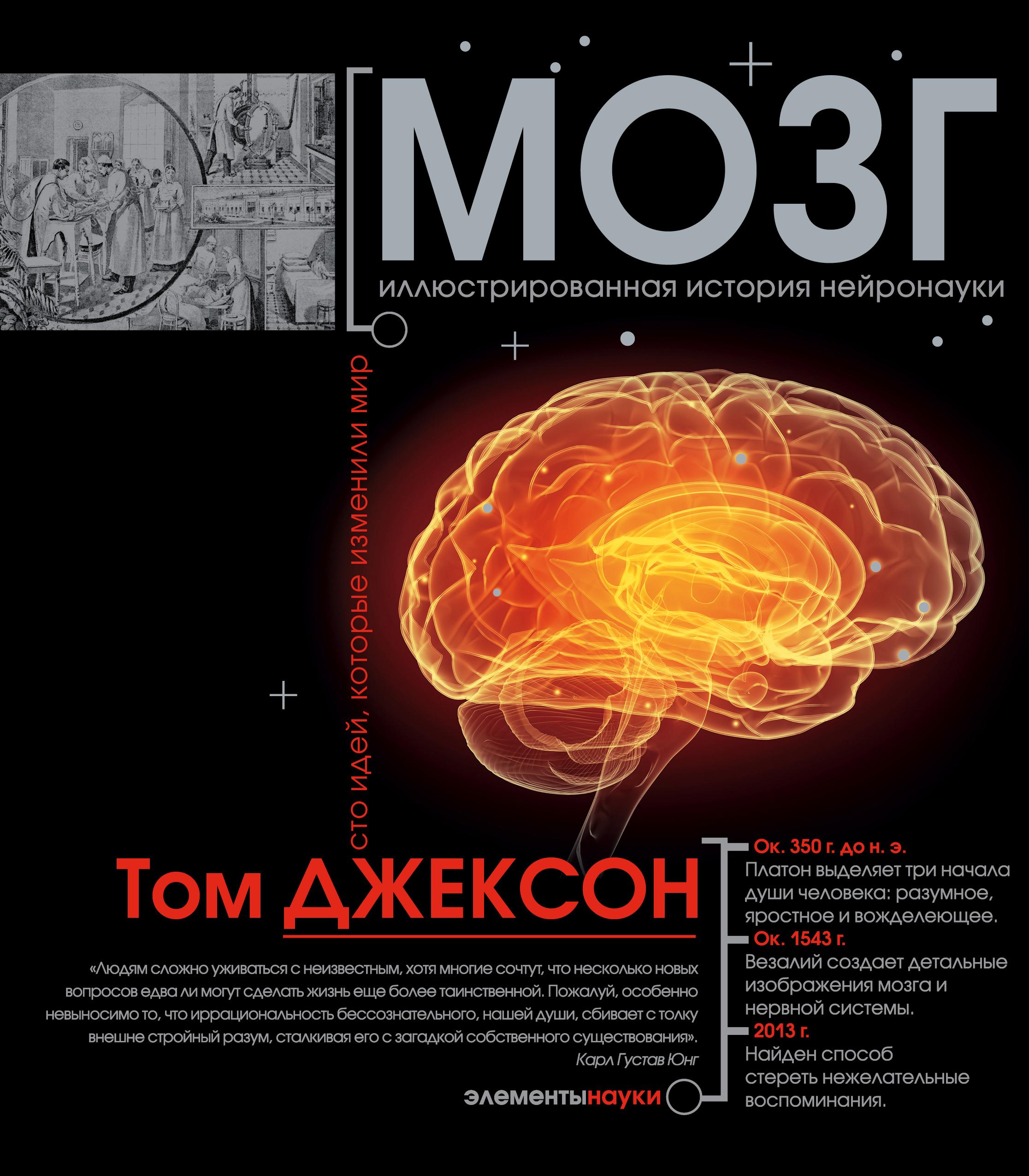 Мозг от book24.ru