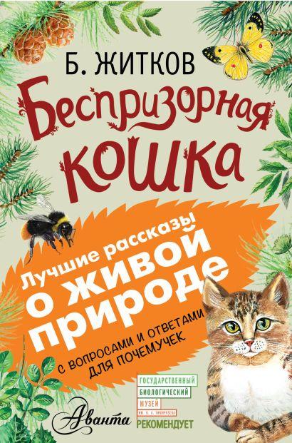 Беспризорная кошка - фото 1