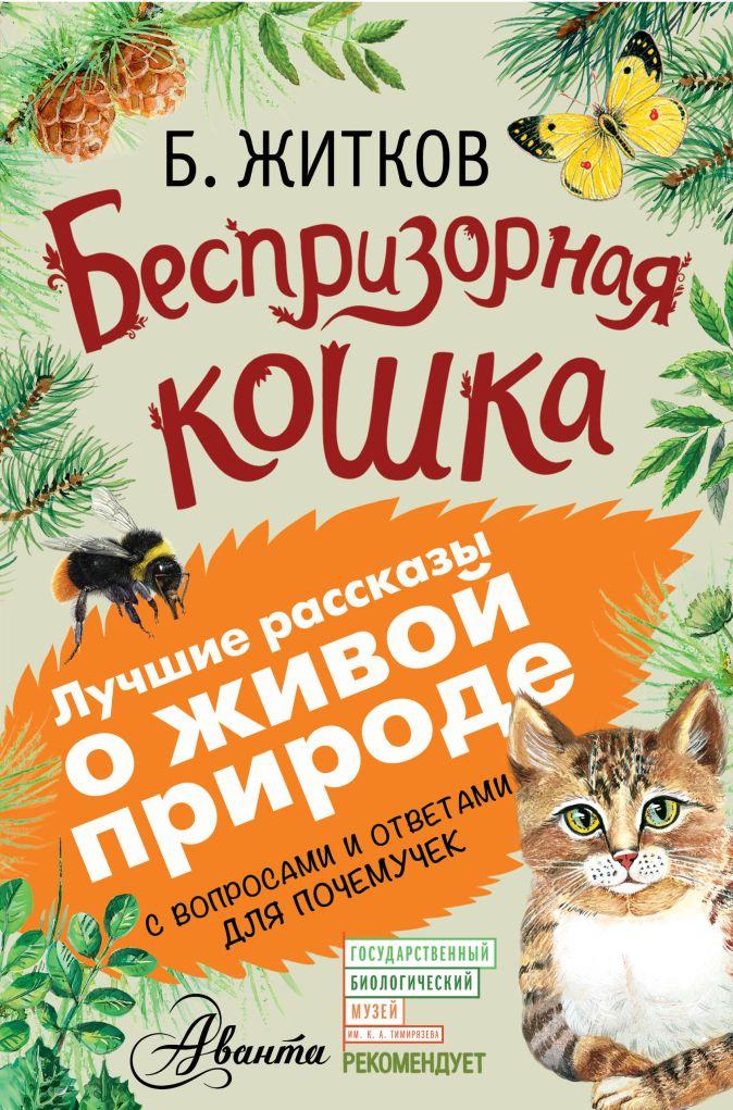 Беспризорная кошка Б. Житков