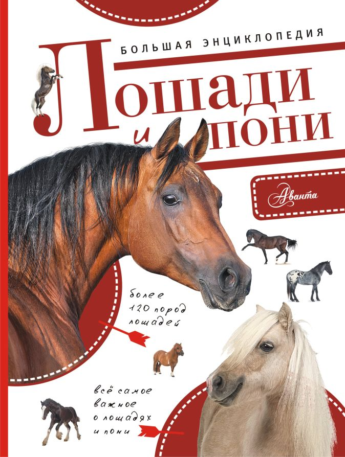 Большая энциклопедия. Лошади и пони Волков А.В.