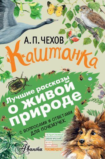 Чехов А. - Каштанка обложка книги