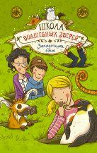 Маргит Ауэр - Школа волшебных зверей. Загадочные ямы' обложка книги