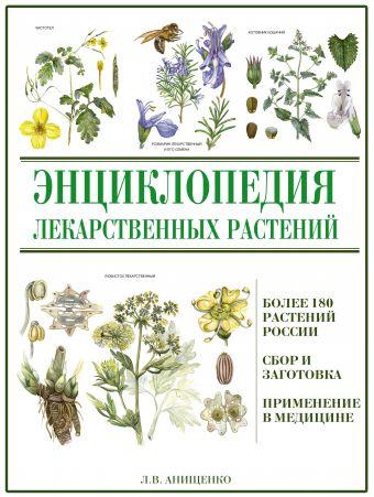 Энциклопедия лекарственных растений Анищенко Л.В.