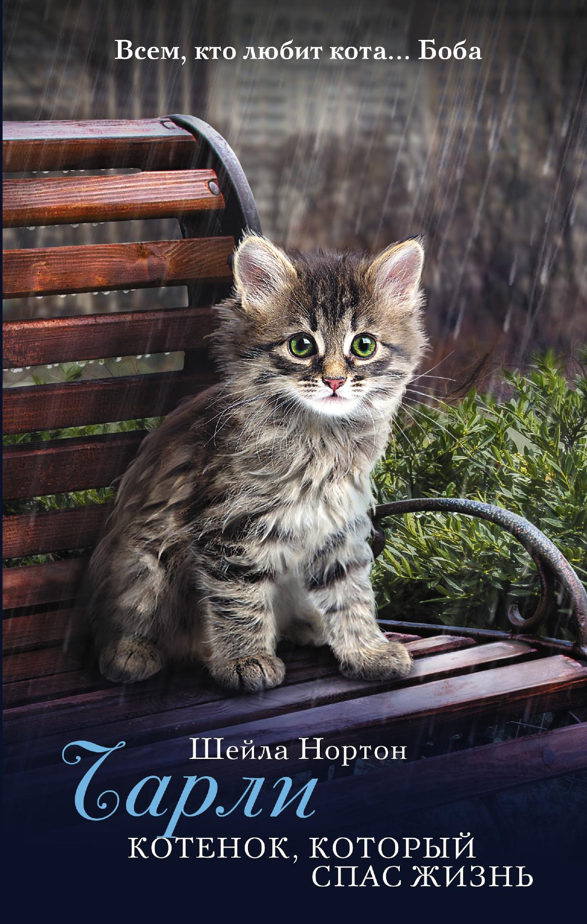 Нортон Ш. Чарли. Котенок, который спас жизнь нортон ш чарли котенок который спас жизнь