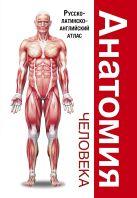 . - Анатомия человека. Русско-латинско-английский атлас' обложка книги