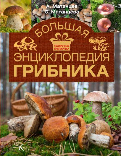 Большая энциклопедия грибника - фото 1