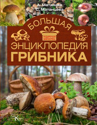 Большая энциклопедия грибника Матанцев А.Н., Матанцева С.Г.