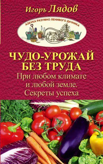 Игорь Лядов - Чудо-урожай без труда. При любом климате и любой земле. Секреты успеха обложка книги