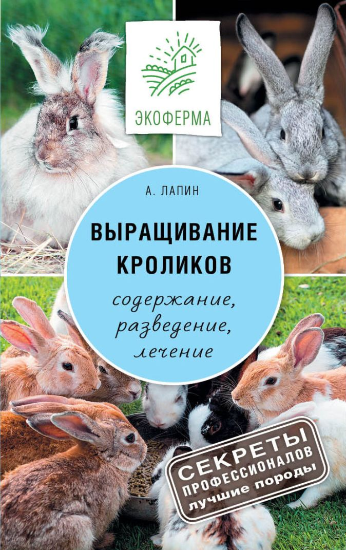 Лапин А.О. - Выращивание кроликов обложка книги