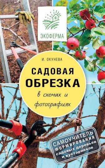Окунева И.Б. - Садовая обрезка в схемах и фотографиях обложка книги