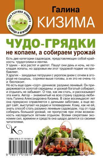 Чудо-грядки: не копаем, а урожай собираем Кизима Г.А.