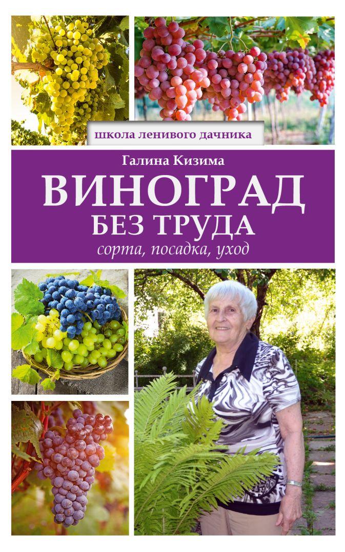 Г.А. Кизима - Виноград без труда обложка книги